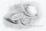 Рисование лимона карандашом поэтапно